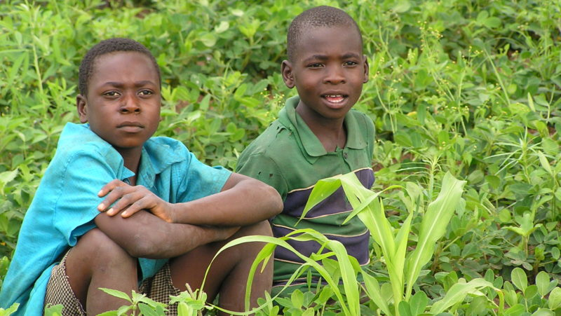 Child Labour: Best Practices & Challenges in Malawi